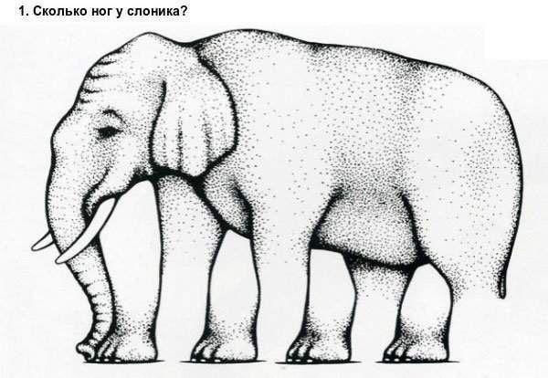 10 Самих крутих оптичних ілюзій
