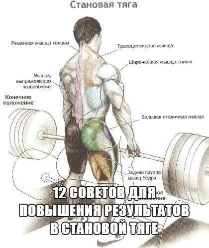 12 Рад для підвищення результатів у становій тязі
