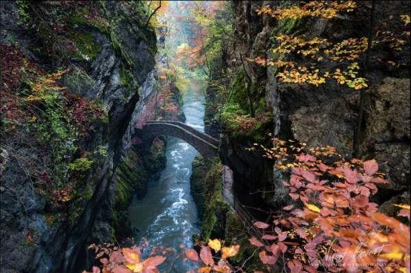 20 казкових мостів, немов провідних в інші виміри