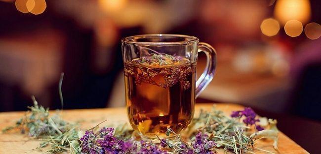 Чай з чебрецем: користь і шкода