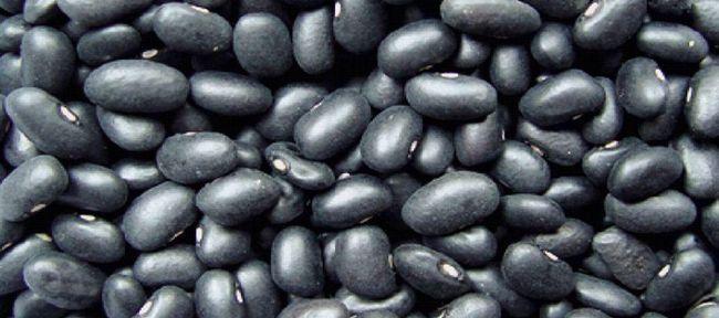 Чорна квасоля: користь і шкода