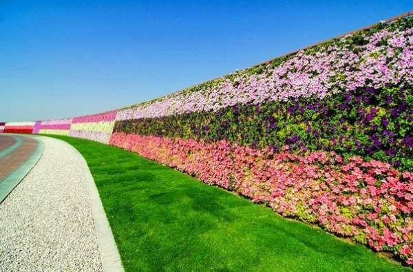 Квітковий диво-парк в Дубай, ОАЕ