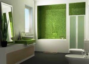 Дизайн зеленої ванної кімнати: 66 фото з ідеями оформлення інтер`єру