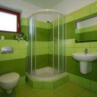 зелена ванна кімната фото 27