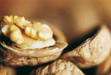 Волоський горіх - корисні і цілющі властивості. Застосування масла волоського горіха в народній медицині. Чи може волоський горіх бути шкідливим?