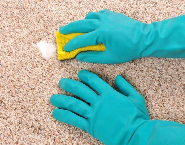 Як легко і ефективно почистити палас
