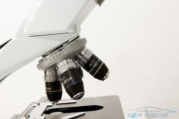 Як підготуватися до здачі аналізу крові на гормони?