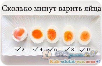 Як варити яйця?