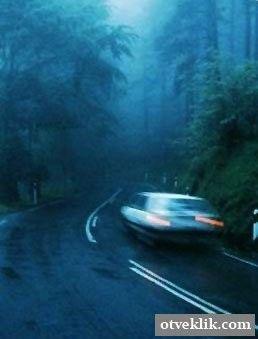 Як водити машину в тумані?