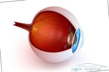 Порушення зору після огляду очного дна: норма або патологія?