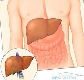Чи необхідна ізоляція хворого на гепатит з?