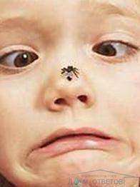 Дитина боїться тварин і комах. Що робити і як допомогти?