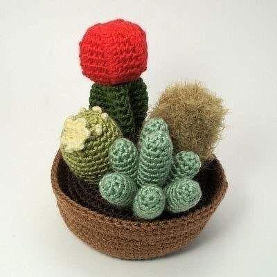 В`язані кактуси.