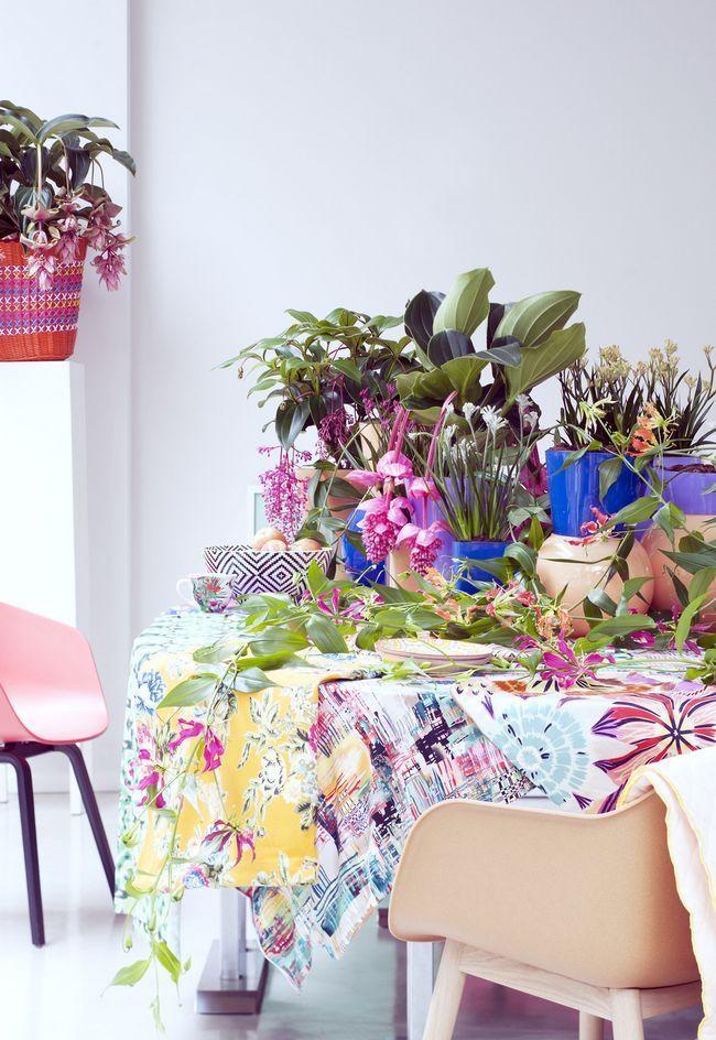 Квіти глоріози на столі дачного будиночка